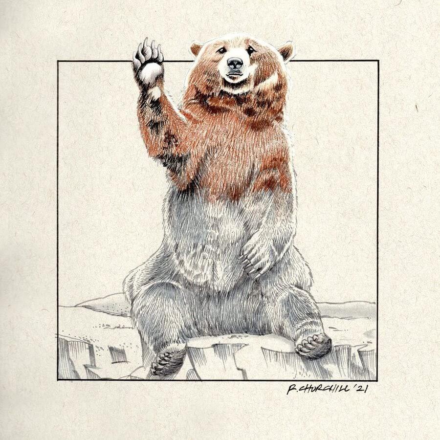 01-Waving-bear-Ron-Churchill-www-designstack-co