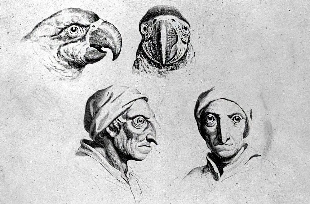 The Physiognomic Heads by Charles Le Brun: 17th Century Sketches Show the Relationship Between Human and Animal Physiognomies