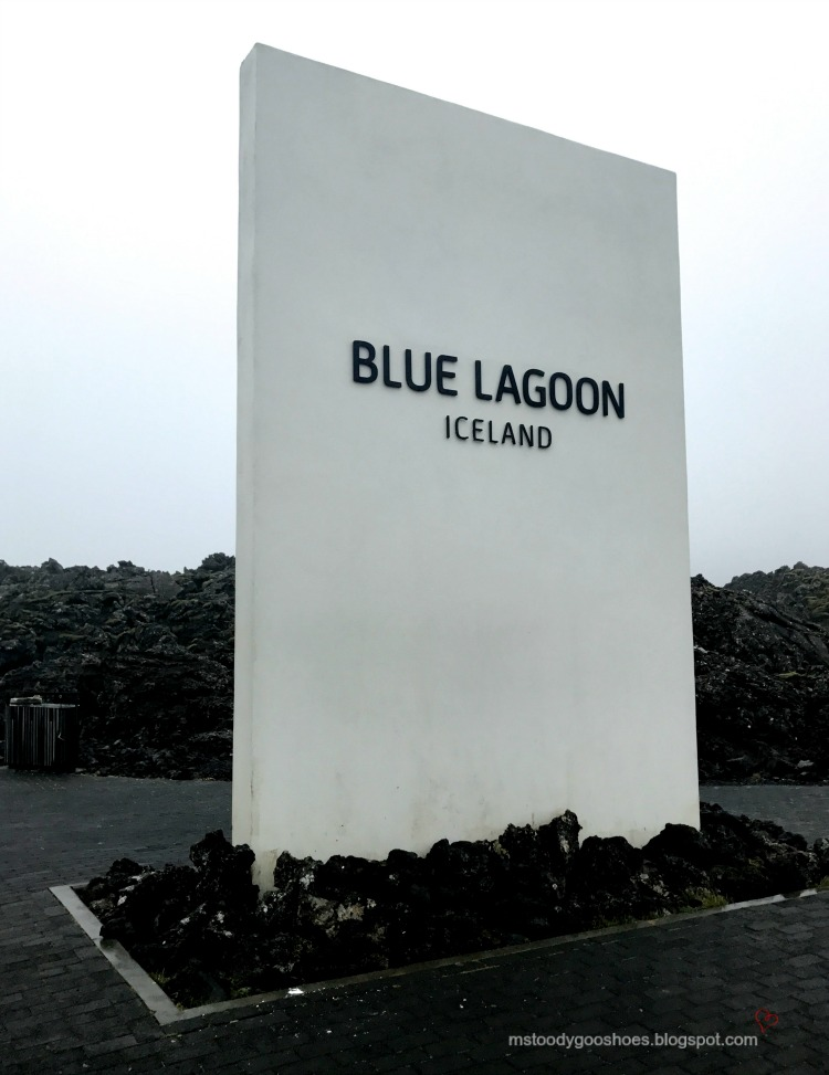 Four Days In Iceland: Day 4 - The Blue Lagoon | Ms. Toody Goo Shoes