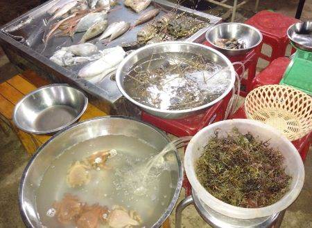 Nhiều loại hải sản tươi sống luôn thu hút du khách đến từ tứ phương.