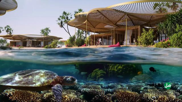 كورال بلوم السعودي .. كل ما تريد معرفته حول هذا المشروع السياحي الكبير