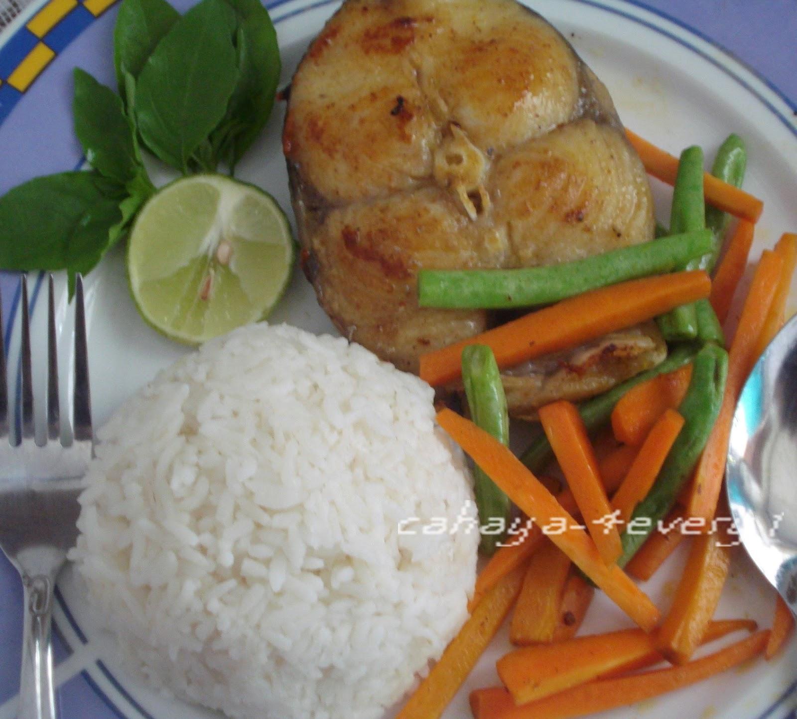 RUMAHKUBAHAGIAKU: Resep Ikan patin panggang dan goreng
