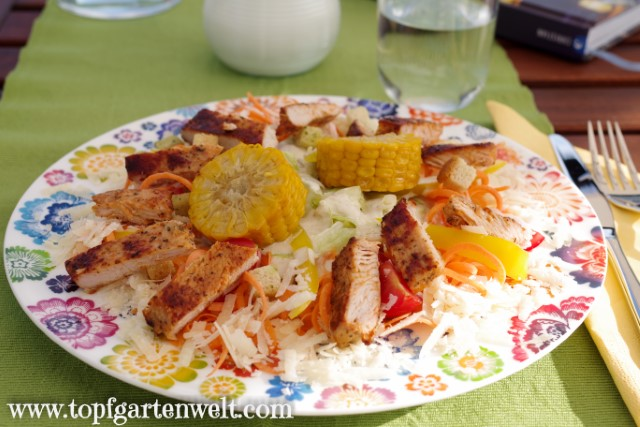 Chicken Caesar Salad mit Croutons und Parmesan - Foodblog Topfgartenwelt