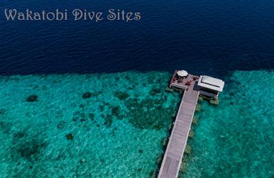 Lokasi Menyelam Wakatobi Dive Sites