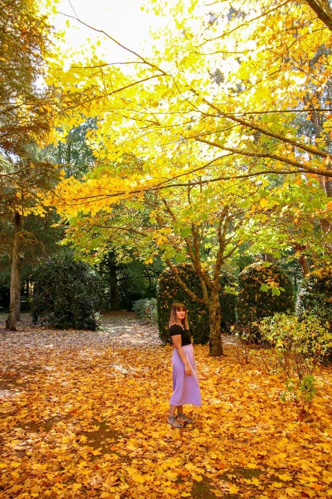 Breenhold Gardens Blue Mountains NSW