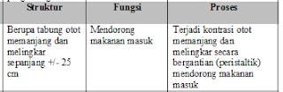 Jawaban c No 3 Asesment Biologi SMA Latihan (UN) Program IPA (Bagian 2)
