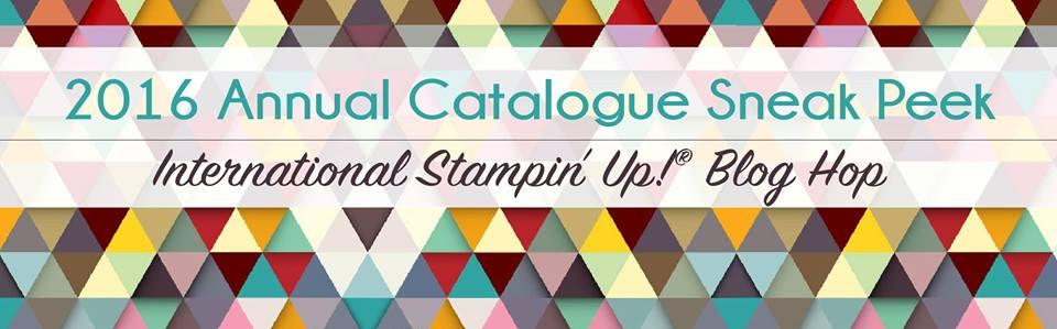 Crush On Colour: 2016 2017 Annual Catalog Sneak Peek