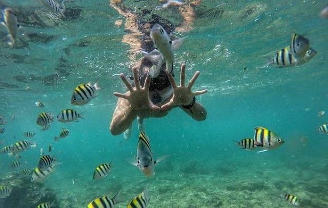 Pantai Nglambor Gunung Kidul, Tempat Snorkeling Terbaik di Jogja