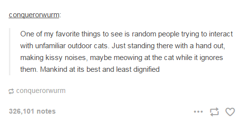 People trying to interact with unfamiliar outdoor cats