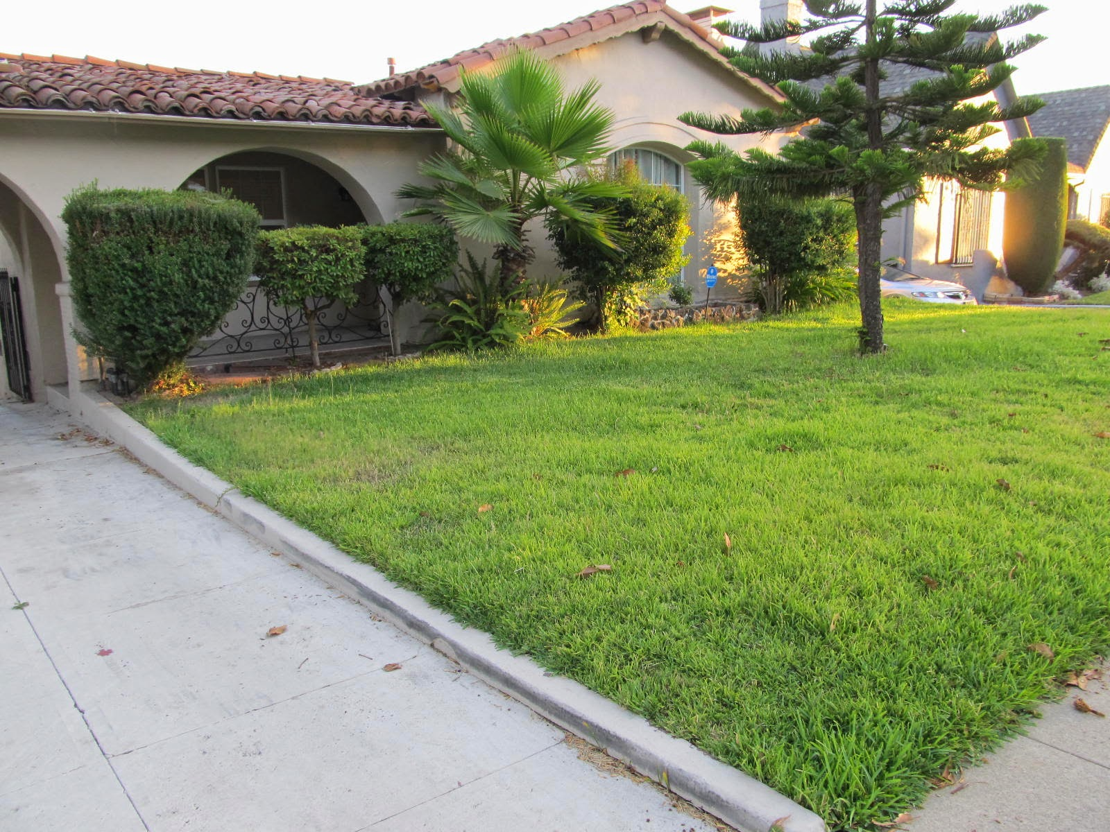Fairy Yardmother Landscape Design: From Front Lawn to Low ...
