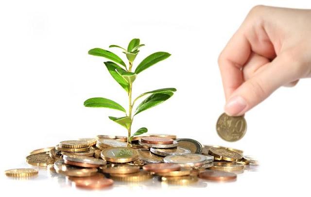 Beragam Jenis Investasi yang Menguntungkan Bagi Setiap Orang