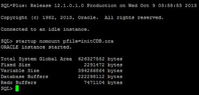 Container Database in 12c, Oracle Database