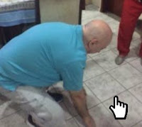 https://www.humordido.net/index.php/2019/11/13/competicao-de-elasticidade/