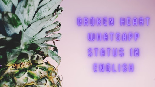 Broken Heart Whatsapp Status In English