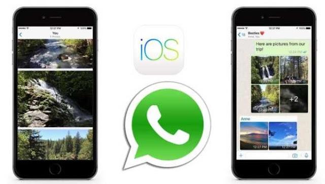 WhatsApp Hadirkan Fitur Filter Foto, Album, dan Shortcut Reply pada iOS