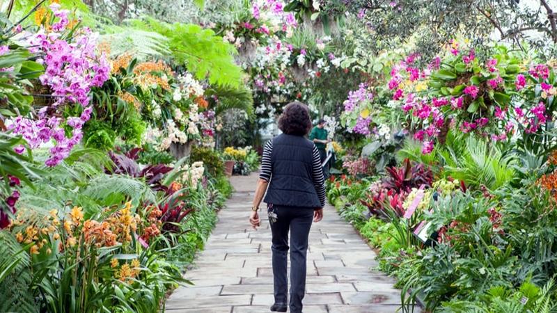 8 Most Beautiful Botanical Gardens Around the World