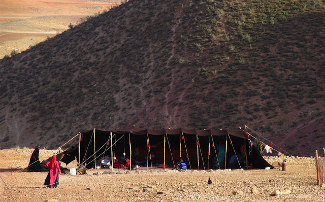 Bakhtiari black tent on the plains.