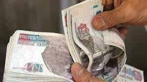 دراسة جدوى كاملة فكرة مشروع برأس مال 100 ألف جنية فى مصر 2020
