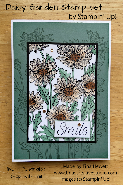 Daisy Garden by Tina Hewett