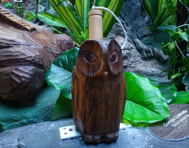 An owl sculptured in wood.