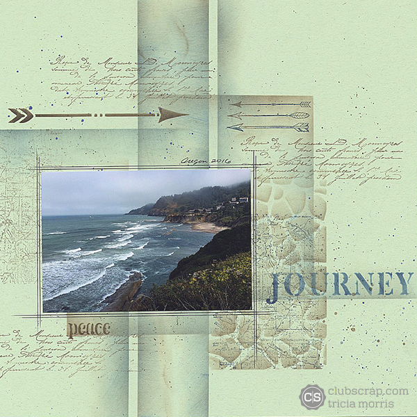 One Paper, One Photo Challenge by Tricia Morris; Adirondacks Collection from Club Scrap #clubscrap #bloghop #scrapbooking #eclipsetape