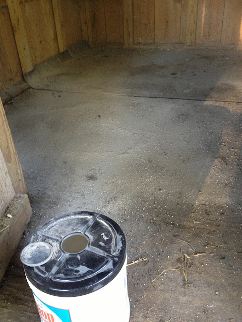DE and barn lime on chicken coop floor