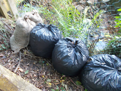 Stored bags of leaf mould How to make leaf mould The Green Fingered Blog