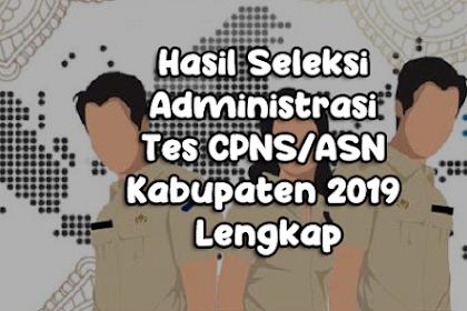 Hasil Seleksi Administrasi Tes CPNS/ASN Kabupaten 2019 Lengkap
