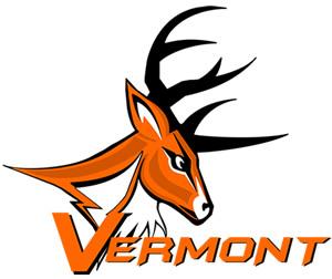 Vermont Bucks Football Brings New Era To Vermont Sports Scene