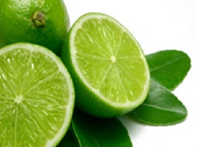 Tips cara mudah menanam jeruk nipis dari pucuk daun dan ranting