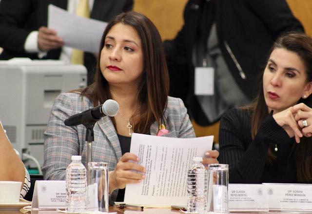 Una mala decisión que el Ejército se quede con todas las ganancias económicas del Tren Maya: Dip. Claudia Reyes Montiel