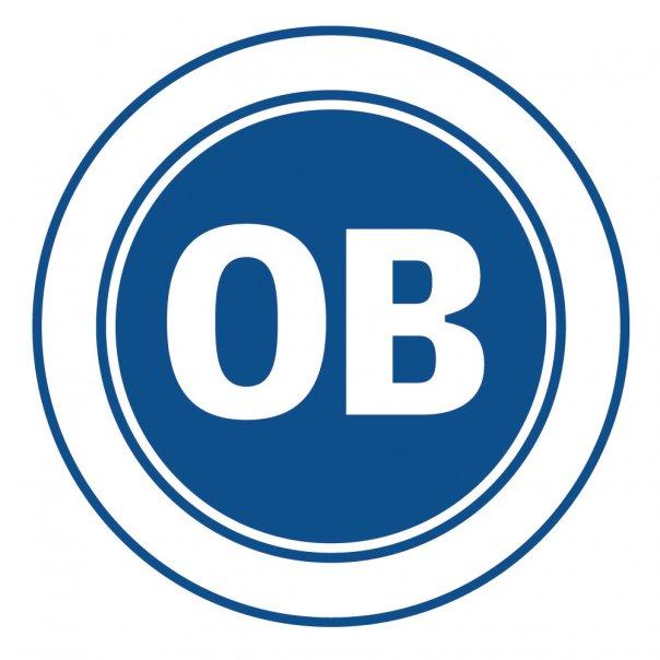 Campeonato dinamarques 1 divisao