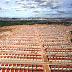 Viana & Moura Construções oferta 50 vagas de emprego para diversos setores