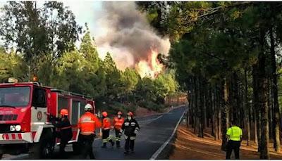 las noticias del incendio de la cumbre de gran Canaria