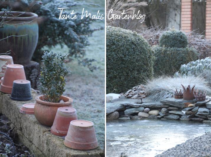 Gartenimpressionen Winter Frost