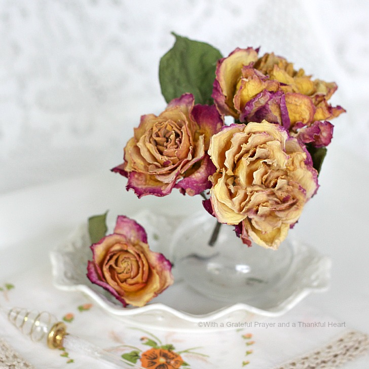 There's nothing lovelier than fresh cut flowers gracing your table or  brightening a place in your