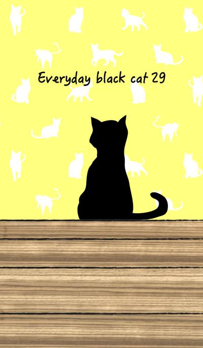 Everyday black cat29