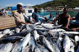 KKP Serius Dukung Program Lumbung Ikan Nasional (LIN) di Provinsi Maluku