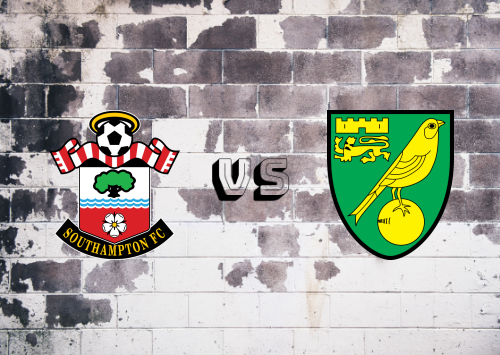 Southampton vs Norwich City  Resumen