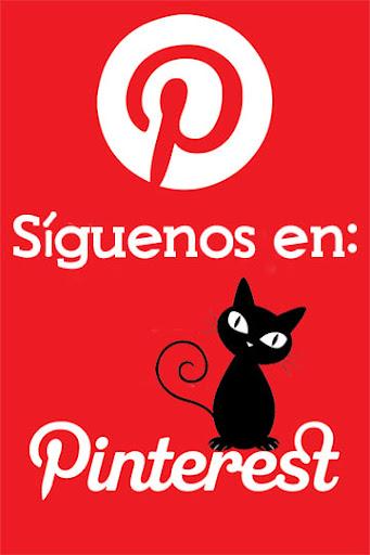 Pinterest de Solo Gatos