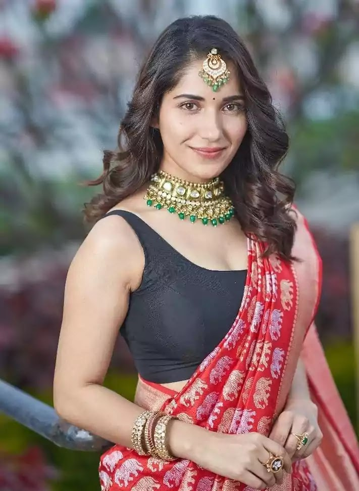 ruhani-sharma-in-red-banarasi-saree