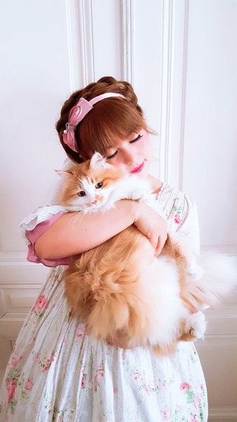 yolanda, lolita fashion, cat, kawaii, jfashion