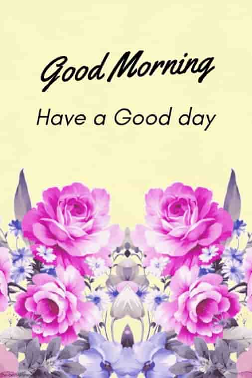 hd greeting card of good morning