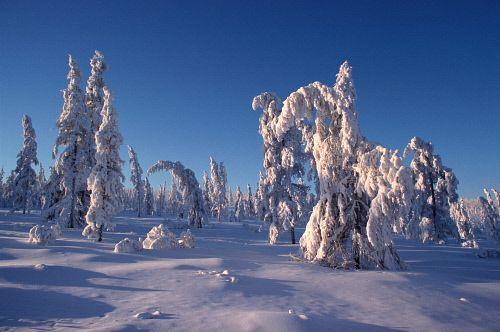 info minda, informasi minda, tempat paling sejuk di dunia