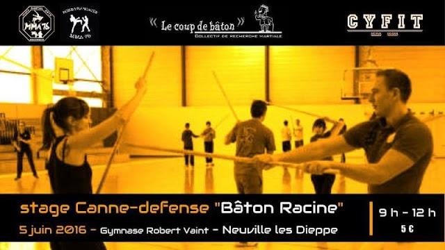 Stage Bâton Racine défense