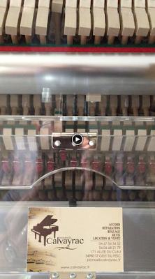 Vidéo du piano Petrof que j'ai équipé en automatique PianoDisc