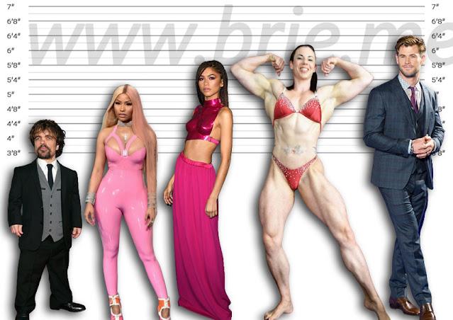 Peter Dinklage, Nicki Minaj, Zendaya, Maria Wattel, and Chris Hemsworth height comparison