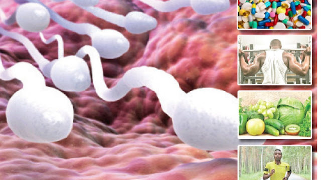 How to improve sperm quality? Increased motility and abundance of sperm