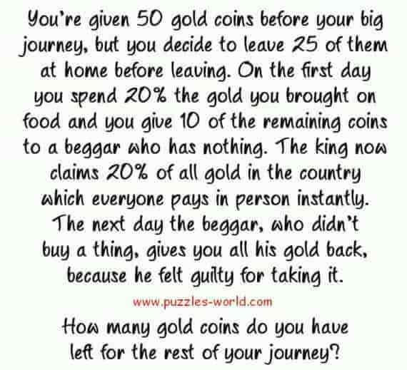 How many Gold coins left for rest of journey ?