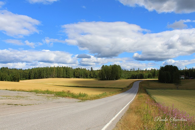 Jäppilänniementie, Imatra